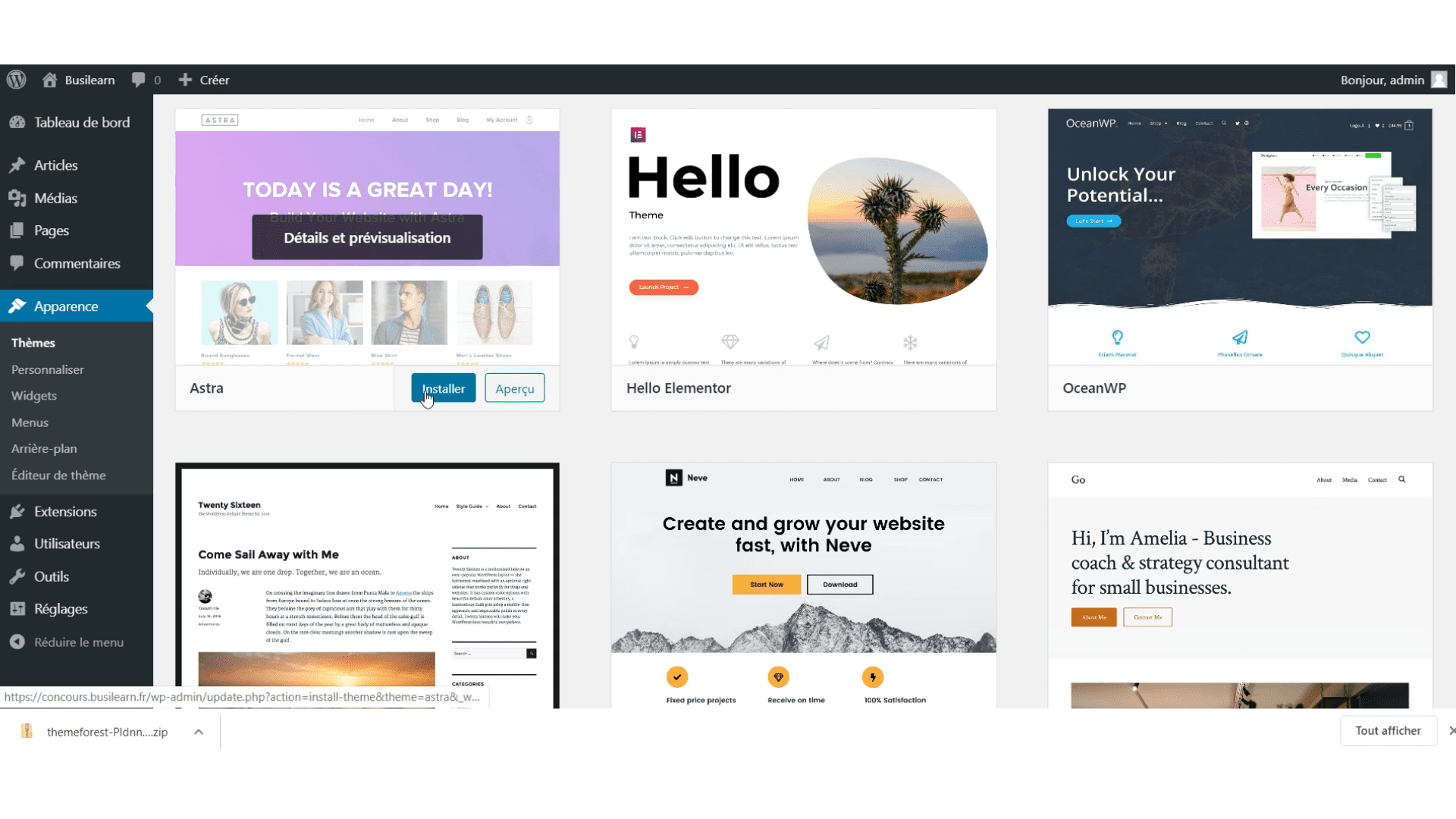 Installer theme wordpress